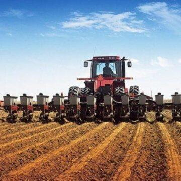 На Прикарпатті збільшились посіви під урожай 2020 року