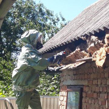 У Снятині з даху будинку виганяли шершнів