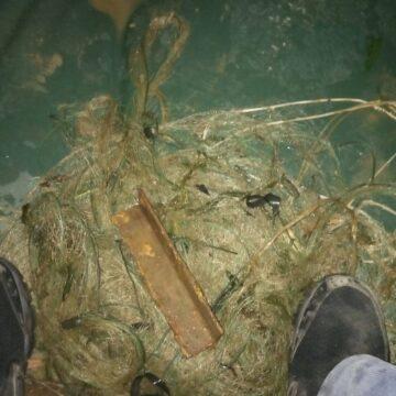 На річці Дністер виявлені 2 безгосподарських знаряддя лову, – Івано-Франківський рибпатруль