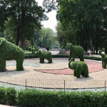 В міському парку Івано-Франківська формують скульптури слонів (фото)