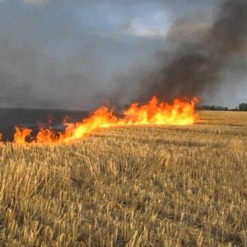 Сім пожеж за добу сталося на Прикарпатті
