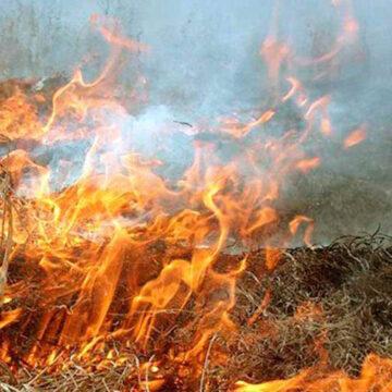Було гаряче: на Прикарпатті за добу гасили 19 пожеж