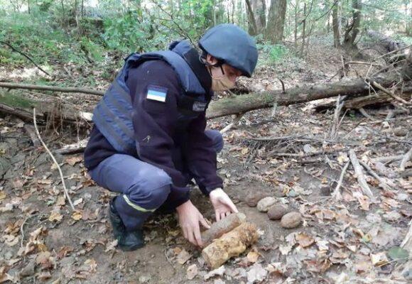 У лісі на Богородчанщині виявили смертоносні знахідки (ФОТО)
