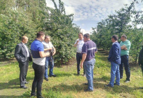 На Тлумаччині планують створювати сільськогосподарські кооперативи, почнуть із вирощування садовини