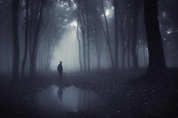 Пішла в ліс і не повернулася: на Косівщині рятувальники знайшли тіло жінки