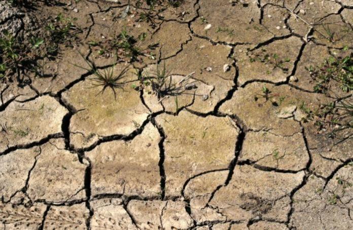 Екорейд: Чому на Франківщині зникають річки? (ВІДЕО)