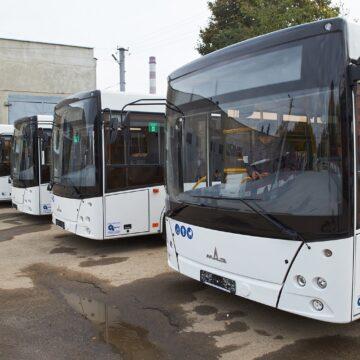 Стало відомо, куди поїдуть нові франківські автобуси