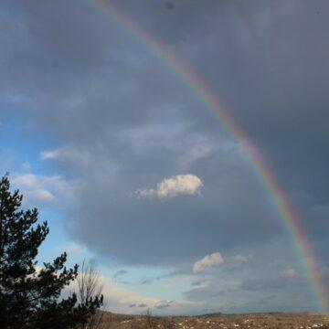 У Карпатах побачили вкрай рідкісне явище для зими (ФОТО)