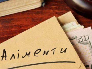 Калуську міську раду зобов'язали визначити перелік робіт для неплатників аліментів