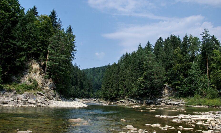 Результат пошуку зображень за запитом Три причини, чому ліси і річки не можна передавати під управління Мінагрополітики