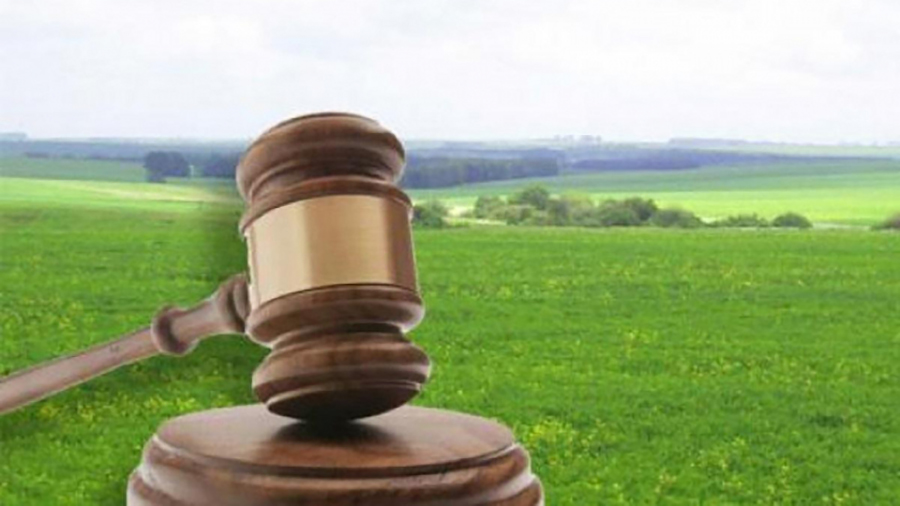 На Прикарпатті вимагають повернення земельної ділянки вартістю понад 11 мільйонів гривень