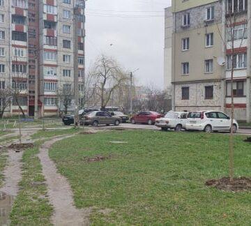 У Франківську триває весняна посадка дерев (ФОТО)